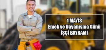 1 Mayıs İşçi Bayramı Grafikleri